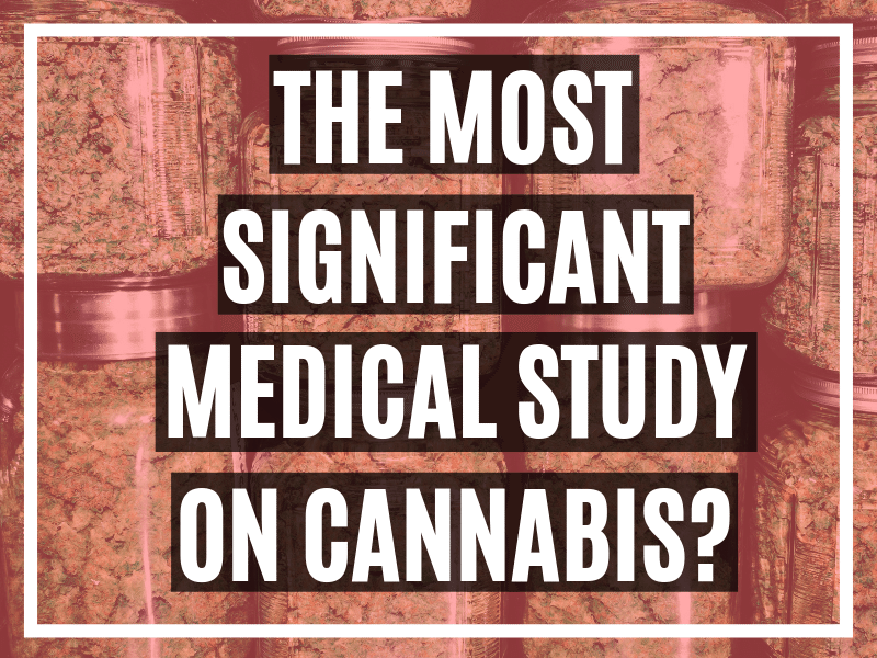 Could This Be The Most Important Medical Study On Cannabis?