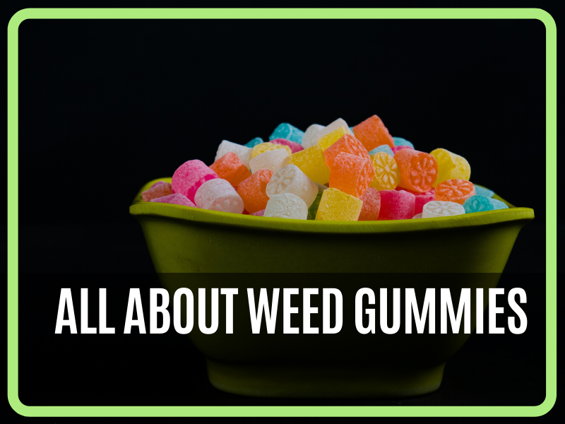 ALL ABOUT WEED GUMMIES